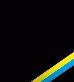 Маша Ефросинина,Маша Ефросинина Евромайдан,Анна Седокова,Анна Седокова Евромайдан,евромайдан,звезды о евромайдане
