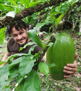 Эктор Хименес-Браво,отдых,фото,Колумбия