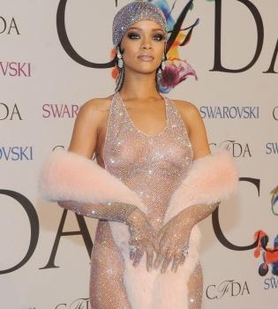 Рианна,платье,фото,CFDA Fashion Awards 2014