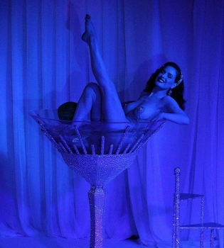 Дита фон Тиз,фото,эротика,в бокале,вечеринка,Фаваз Груози