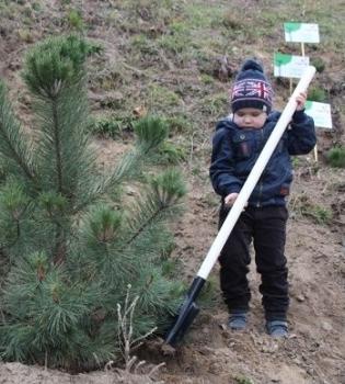Canon,акция,посади дерево