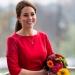 Кейт Миддлтон,благотворительность,стиль,беременна,фото,платье,хоспис
