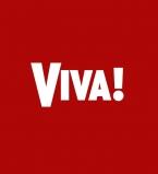 журнал вива, журнал viva, вива, viva, холостяк, холостяк 5, джонни депп, тина кароль, сын тины кароль