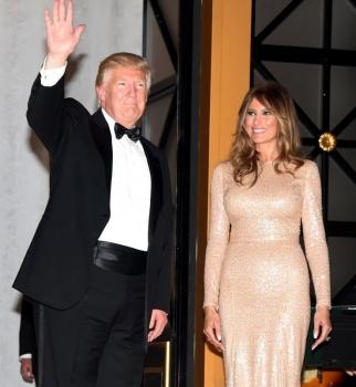 дональд трамп, дональд трамп факты, дональд трамп интересные факты, дональд трамп жена, дональд трамп президент, дональд трамп дочь, ивана трамп, мелания трамп
