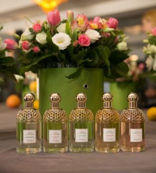 guerlain, bergamote calabria, aqua allegoria, terracota