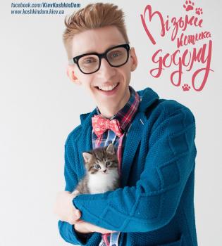 Кошкин дом, приют для животных, приют для животных Киев, приют для кошек, приют для котов, приют для котов Киев