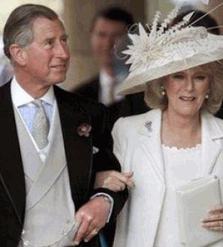 Принц Уильям,принц Чарльз