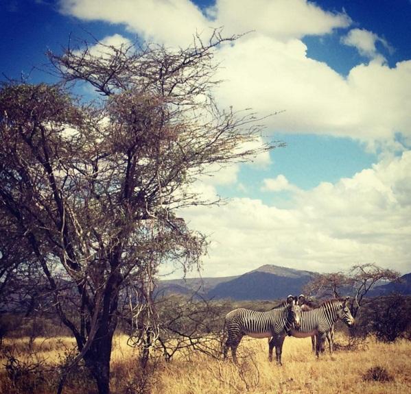 Семейное сафари: Даутцен Крус с мужем и детьми путешествует по Кении