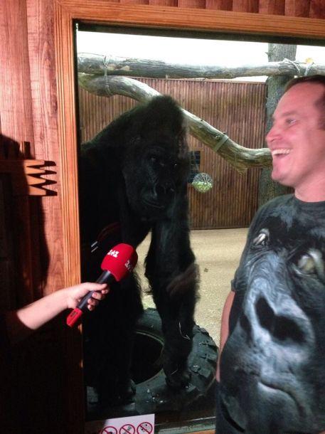 Хайден Панеттьери подарила новый вольер горилле из киевского зоопарка
