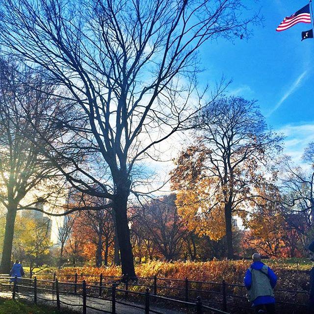 Анфиса Чехова отправилась с мужем в романтическое путешествие в Нью-Йорк