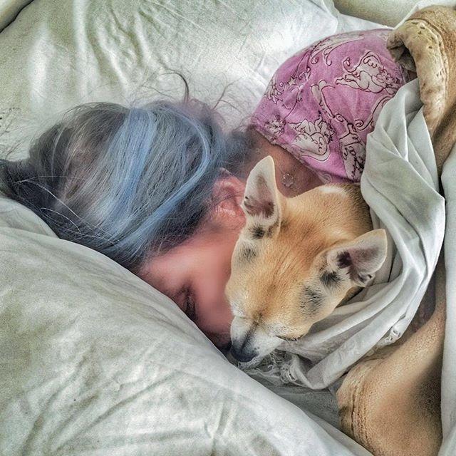Фотофакт: Орнелла Мути покрасила волосы в голубой цвет