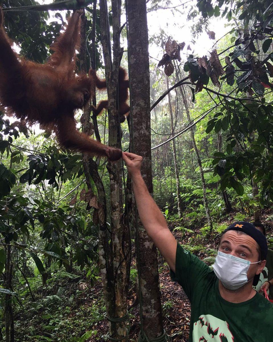 Леонардо ДиКаприо путешествует по Индонезии