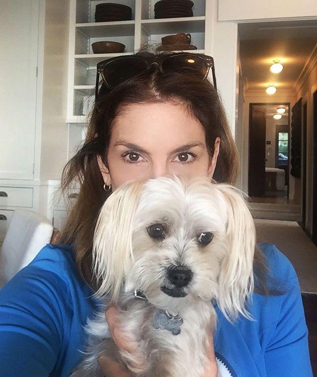 Смелое селфи: 50-летняя Синди Кроуфорд позирует без макияжа