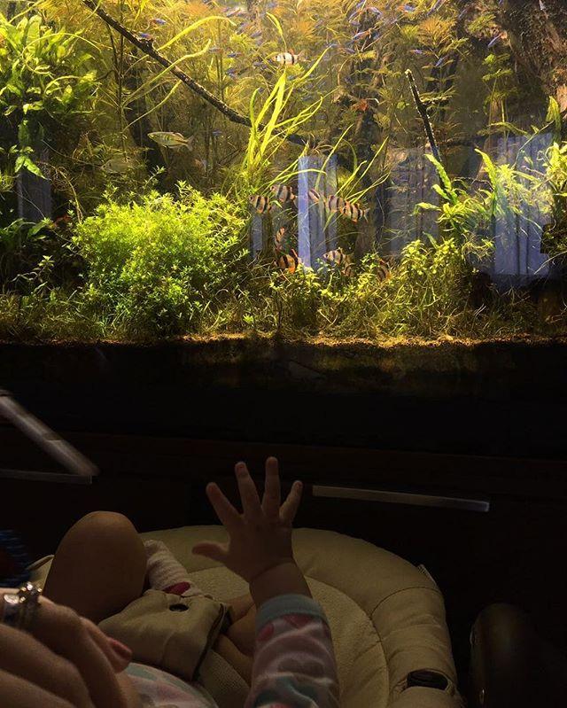 Нам пять месяцев: Сергей Безруков опубликовал милое фото дочери