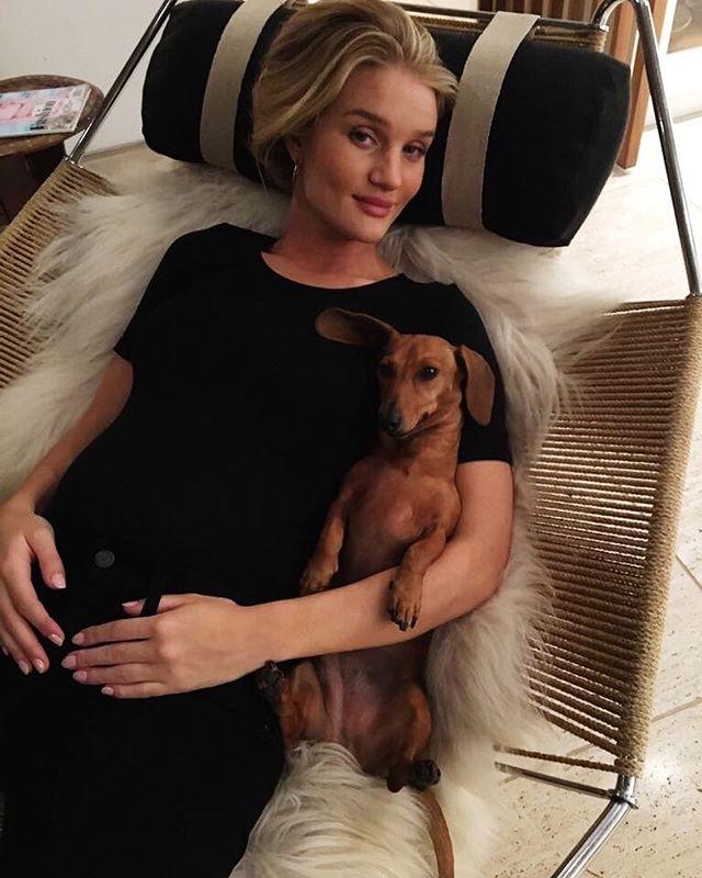 Спокойствие и уют: беременная Роузи Хантингтон-Уайтли поделилась домашним фото