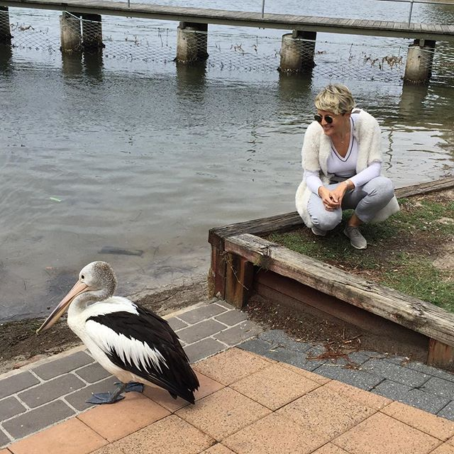 Романтика на двоих: Анжелина Варум и Леонид Агутин путешествуют по Австралии