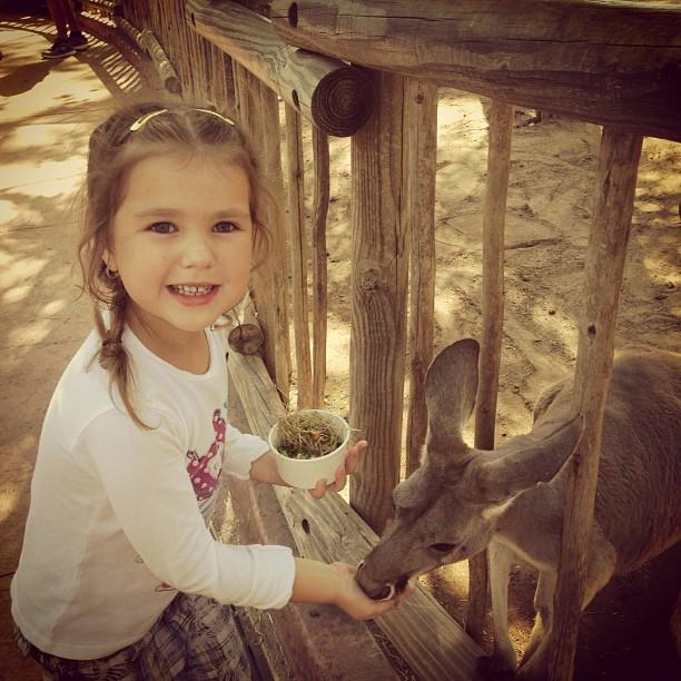 Лилия Подкопаева дети фото 2013