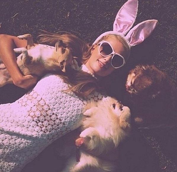 Сексуальный кролик: Пэрис Хилтон позирует в соблазнительных костюмах