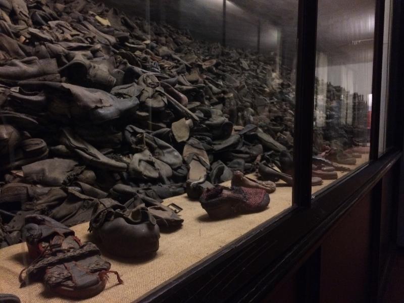 Регина Тодоренко побывала в концлагере Освенцим