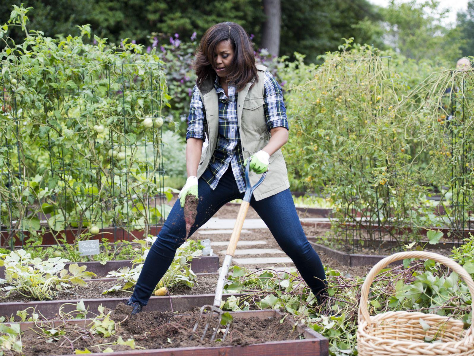 Фото дня: Мишель Обама работает в саду Белого дома
