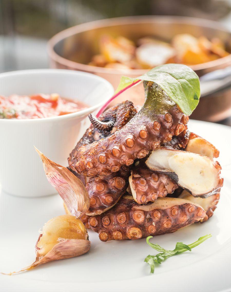 Средиземноморский осьминог  в панорамном ресторане Терракота