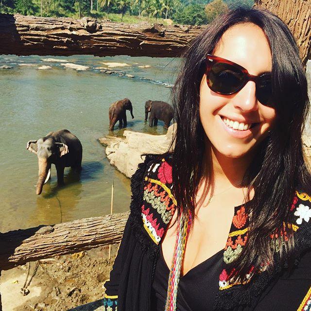 Джамала прокатилась на Шри-Ланке на слонах