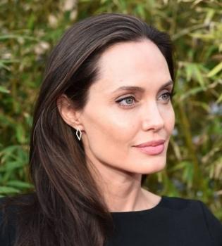 Анджелина Джоли с детьми отпраздновали Новый год без Брэда Питта