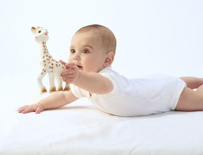 Жирафа Софи