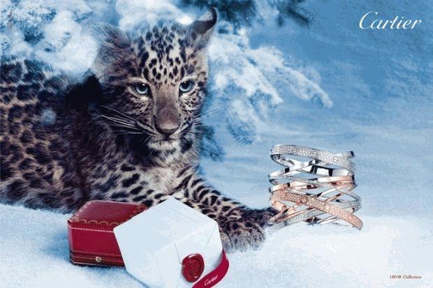 Леопардик в рекламе