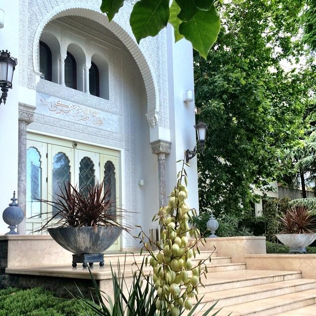 отель Софии Ротару в Крыму