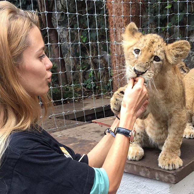 Виктория Боня заобнимала львят