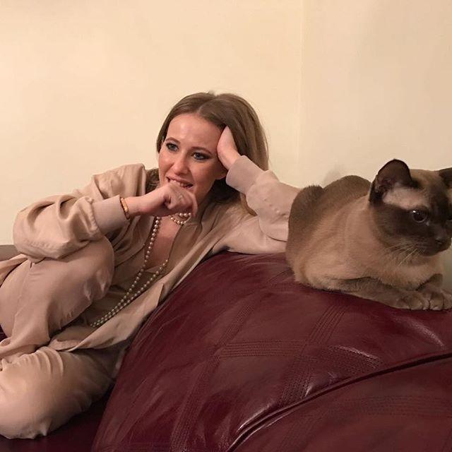 В сети обсуждают вторую беременность Ксении Собчак