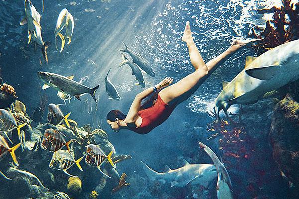 Опасная красота: Рианна снялась в фотосессии с акулами