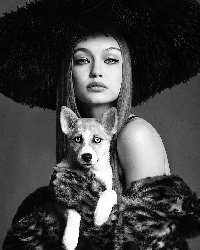 Джиджи Хадид снялась в роскошной фотосессии для японского Vogue
