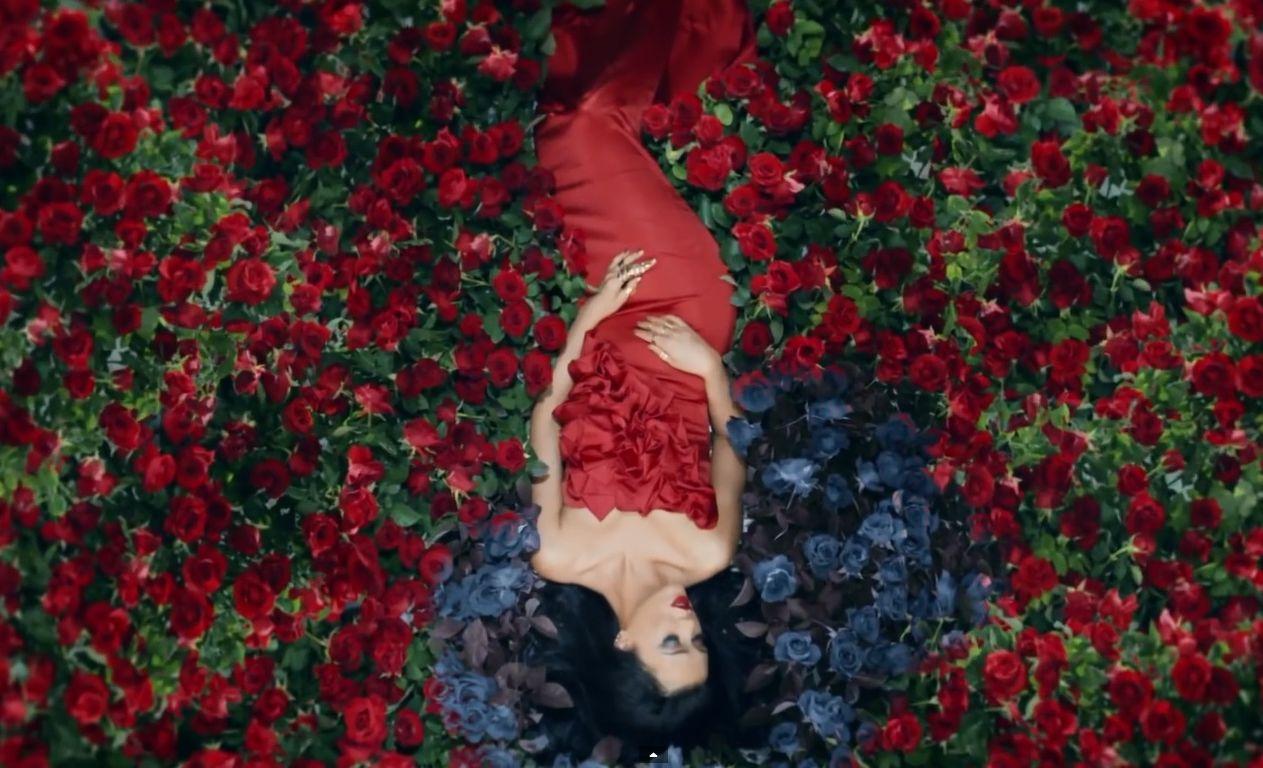 пирог фотографии миллионы алых роз сырьем